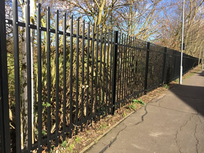 Black coated PVC palisade fence with rounded & notched top for the road to separate the trees.